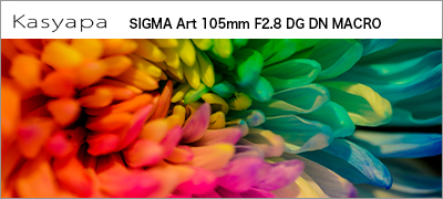 SIGMA Art 105mm F2.8 DG DN MACRO E-Mount