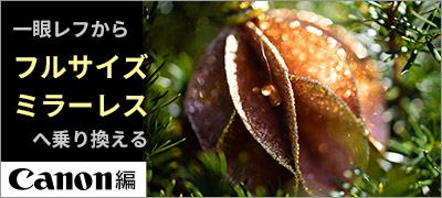 フルサイズミラーレスデビュー(キヤノン編)