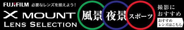風景/夜景/スポーツ