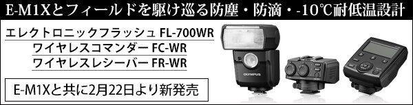 FL700WR