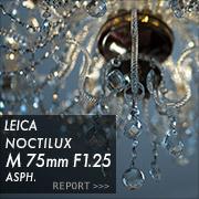 Leica M75mmF1.25