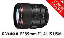 Canon (キヤノン) EF85mm F1.4L IS USM