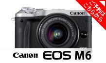 Canon (キヤノン) EOS M6