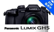 Panasonic (パナソニック) LUMIX GH5