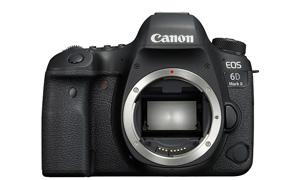 Canon (キヤノン) EOS 6D Mark II