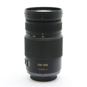 LUMIX G VARIO 100-300mm F4.0-5.6 MEGA O.I.S.