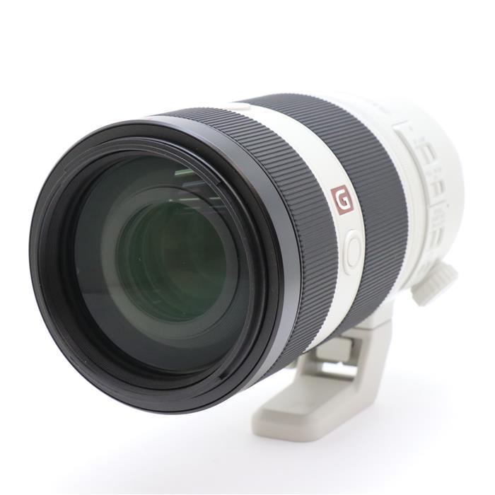 FE 100-400mm F4.5-5.6 GM OSS SEL100400GM