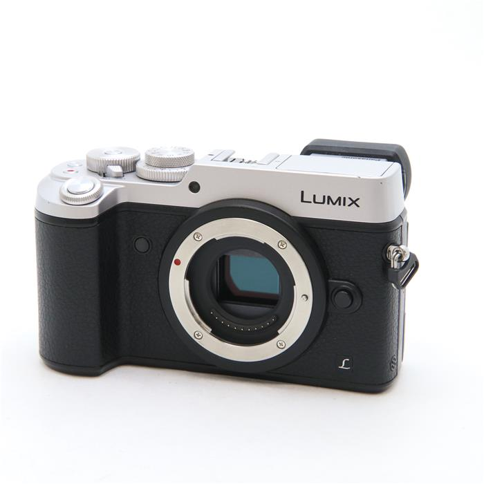 LUMIX DMC-GX8 ボディ