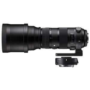 S 150-600mm F5-6.3 DG 1.4xテレコンバーターキット(キヤノン用)