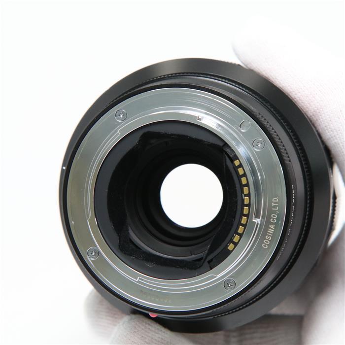 MACRO APO-LANTHAR 110mm F2.5 E-mount(ソニーE用/フルサイズ対応)