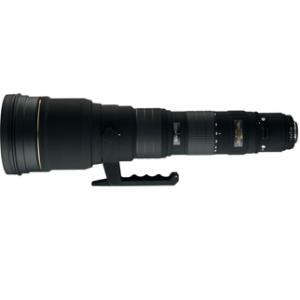 APO 300-800mm F5.6EX DG HSM(キヤノン用)