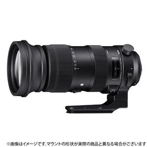 SIGMA (シグマ) Sports 60-600mm F4.5-6.3 DG OS HSM(ニコンF用) メイン