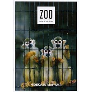 舞山秀一図録 『ZOO』