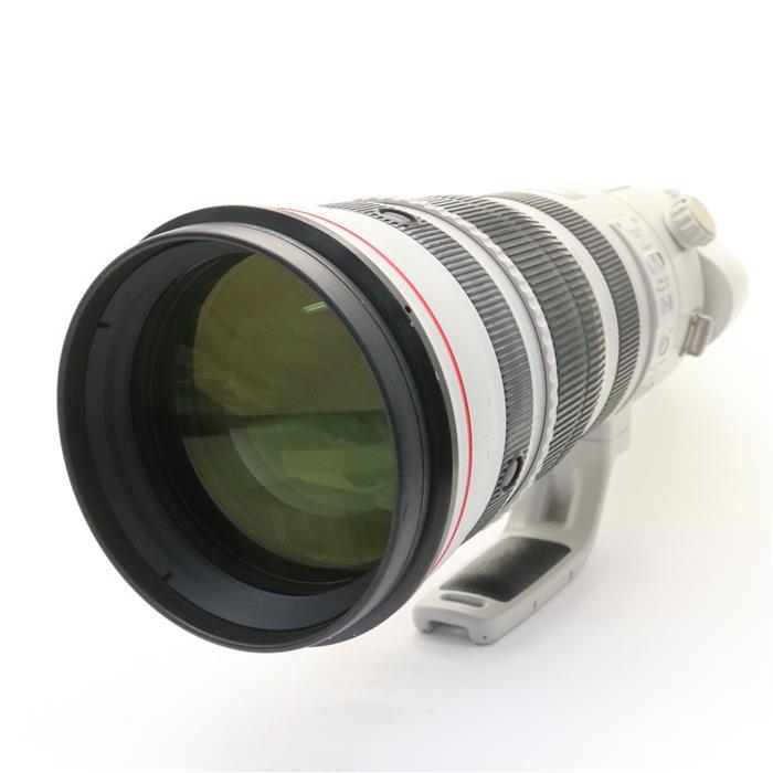 EF200-400mm F4L IS USM エクステンダー 1.4×