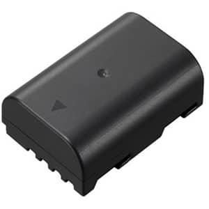 Panasonic (パナソニック) バッテリーパック DMW-BLF19 メイン