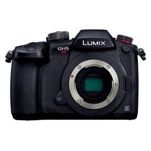 Panasonic (パナソニック) LUMIX DC-GH5S ボディ メイン