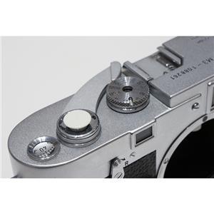 オリジナルMボタン(無地) ホワイト